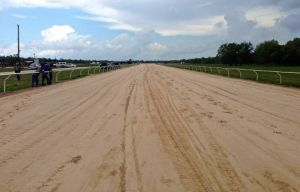 horse race track soil screening